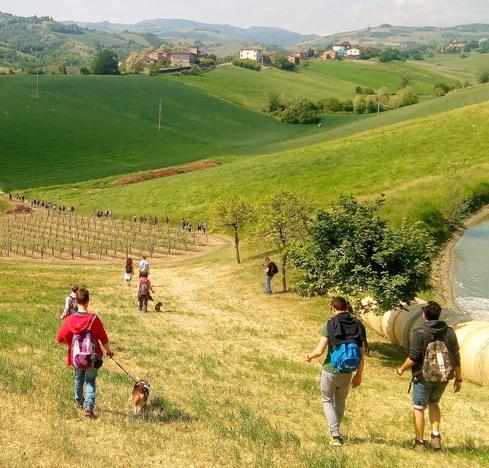 Percorsi a piedi nelle campagne e colline modenesi